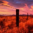 Stock Photo: Countryside of New Zealand at Sunset