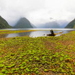 Milford Sound — Stock Photo