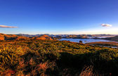 Otago Peninsula, Dunedin — Stock Photo