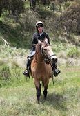 男孩和马 — 图库照片