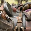 Stock Photo: Horse saddle