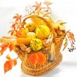 Harvest basket — Stock Photo
