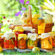 Autumn preserves — Stock Photo #6020368