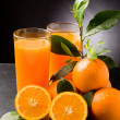 Orange Juice — Stockfoto #5462887