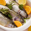 Trout with Orange and Lemon - Stock Photo