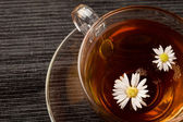 Chamomile with Marguerite — Stock Photo