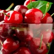 Cherry Cocktail — Stock Photo