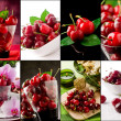 Cherry collage — 图库照片