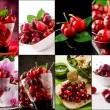 Cherry collage — Stock Photo