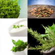 Herbs collage — Stock Photo #5754972
