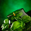 Candle with basil flavour — Stock Photo #5779191