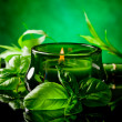 Candle with basil flavour - Stock Photo