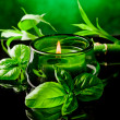 Candle with basil flavour — Stock Photo