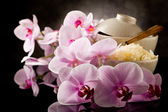 Asian rice dish with orchid flowers — Stock Photo