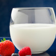 Royalty-Free Stock Photo: Milk with berries
