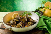 Pan with fresh Clams — Stock Photo