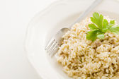 Risotto with italian meet - Risotto alla Mantovana — Stockfoto