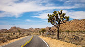 Traveling through Joshua Tree National Park — Stock Photo