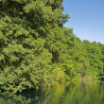 Drim River Scene — Stock Photo #5863741