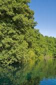 川川のシーン — ストック写真