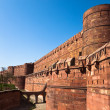 Agra Fort — Stock Photo #5978231