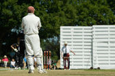 英語クリケット — ストック写真