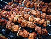 Pratos de carne — Foto Stock