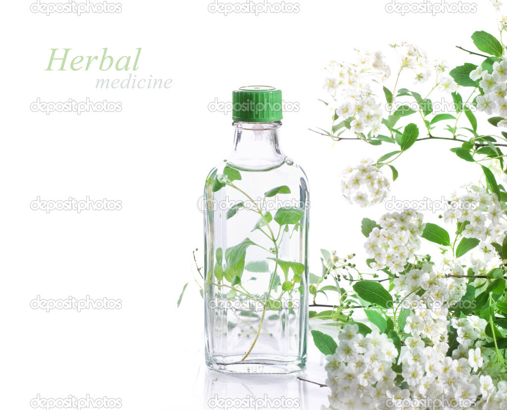 Herbal medicine  Stock Photo #5877665