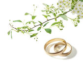 Wedding rings and white flowers — Stock Photo