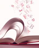 öppnade magiska boken — Stockfoto