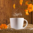 Coffee with orange flowers — Stock Photo