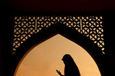Silhoutte of muslim woman praying — Stock Photo