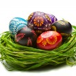 Easter Eggs in Nest on Green — Stock Photo