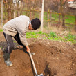 Old farmer digging in the garden — Stock Photo #5473315