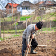 Old farmer digging in the garden - Stock Photo