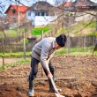 Old farmer digging in the garden — Stock Photo #5473326