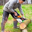 Old farmer with chainsaw cutting a tree — 图库照片