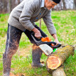 Old farmer with chainsaw cutting a tree - Stockfoto