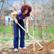 Redhead young lady digging in the garden — Stock Photo #5473389