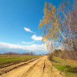 Rural empty road — Foto Stock