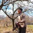 Stock Photo: Old farmer trimming apple trees