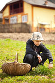 Country boy cutting grass for animals — Stock Photo