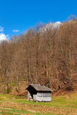 Countryside landscape with wooden shack and forest — Stock Photo