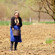 Old farmer woman sowing — Stock Photo