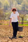 Young woman farmer planting — Stock Photo