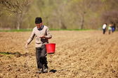 Senior farmer sowing seeds from a bucket — Stock Photo