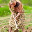 Old rural woman working the land - Stockfoto