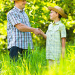 Father and son shaking hands — Stock Photo