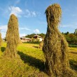 Hay stacks — Foto Stock