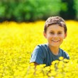 Cute kid in a field of flowers - Foto de Stock